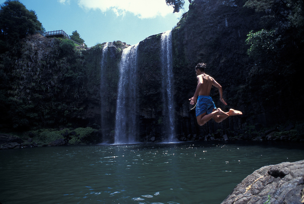New Zealand, North Island, Whangarei, Young man leaps into swimming pool under Whangarei Falls, a popular swimming hole