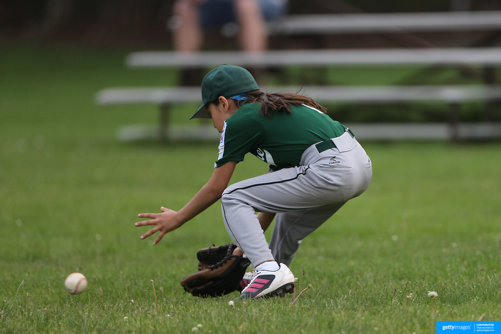 A young girl fields the ball in the outfield during the Norwalk Little League baseball competition at Broad River Fields,  Norwalk, Connecticut. USA. Photo Tim Clayton