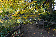 A rustic bench at The Pond in Central Park.