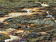 The snows of Chopicalqui are reflected in streams passing through the mossy meadow at Pisco Base Camp 4,700m.