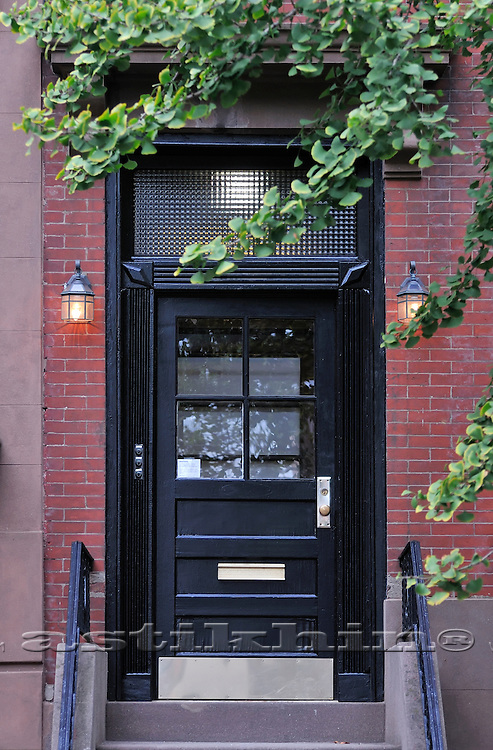 Black door and Ginkgo Biloba