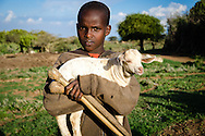 A Maasai boy who lives in the widow's village, with one of his lambs.