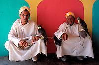 Maroc, El Jadida, Fantasia pour le moussem de Moulay Abdallah, Chasseurs avec faucons // Eagle hunter at the Moussem of Moulay Abdalla, El Jadida, Morocco