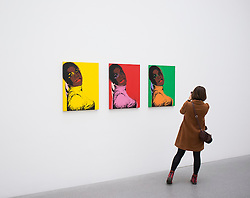 Andy Warhol paintings at Pinakothek Moderne art museum in Munich Germany
