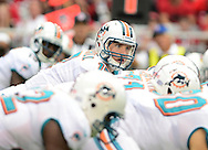 Sept. 30, 2012; Glendale, AZ, USA; Miami Dolphins quarterback Ryan Tannehill (17) reacts at University of Phoenix Stadium. Mandatory Credit: Jennifer Stewart-US PRESSWIRE.