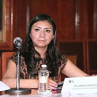 Toluca, México.- La diputada Annel Flores Gutiérrez, durante el foro de Equidad de Genero y la No Violencia a la Mujer, organizado por el Barzón en la Cámara de Diputados. Agencia MVT / José Hernández