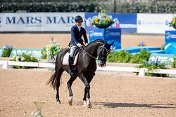 Den Dulk Nicole, NED, Wallace NOP<br /> World Equestrian Games - Tryon 2018<br /> © Hippo Foto - Sharon Vandeput<br /> 22/09/2018