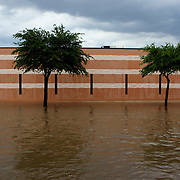 Rain water on W. Ohio Ave. in Midland, TX covers the curb and sidewalk in front of the Subsurface Library building.