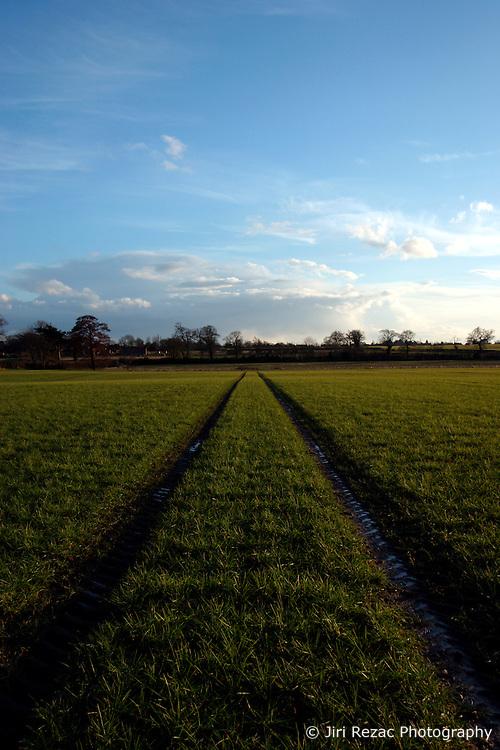 UK ENGLAND NORFOLK HINDOLVESTON 13MAR04 - Farmland near Hindolveston village, rural Norfolk, England.<br /> <br /> <br /> <br /> jre/Photo by Jiri Rezac<br /> <br /> <br /> <br /> © Jiri Rezac 2004<br /> <br /> <br /> <br /> Contact: +44 (0) 7050 110 417<br /> <br /> Mobile:  +44 (0) 7801 337 683<br /> <br /> Office:  +44 (0) 20 8968 9635<br /> <br /> <br /> <br /> Email:   jiri@jirirezac.com<br /> <br /> Web:    www.jirirezac.com