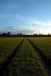 UK ENGLAND NORFOLK HINDOLVESTON 13MAR04 - Farmland near Hindolveston village, rural Norfolk, England.<br /> <br /> <br /> <br /> jre/Photo by Jiri Rezac<br /> <br /> <br /> <br /> &copy; Jiri Rezac 2004<br /> <br /> <br /> <br /> Contact: +44 (0) 7050 110 417<br /> <br /> Mobile:  +44 (0) 7801 337 683<br /> <br /> Office:  +44 (0) 20 8968 9635<br /> <br /> <br /> <br /> Email:   jiri@jirirezac.com<br /> <br /> Web:    www.jirirezac.com