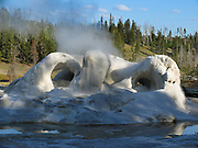 Mineral deposits form the arches of Grotto Geyser in Yellowstone National Park, Wyoming, USA. Grotto Geyser is powered by boiling groundwater heated by a hotspot of light, hot, molten mantle rock near the surface. 640,000 years ago, a supereruption of the Yellowstone Supervolcano created the Yellowstone Caldera which measures 34 miles (55 km) by 45 miles (72 km). Any time in the next few hundred millennia, the active volcano of Yellowstone threatens vast destruction in North America and modification of world climate. Yellowstone was the first national park in the world (1872), and UNESCO honored it as a World Heritage site in 1978.