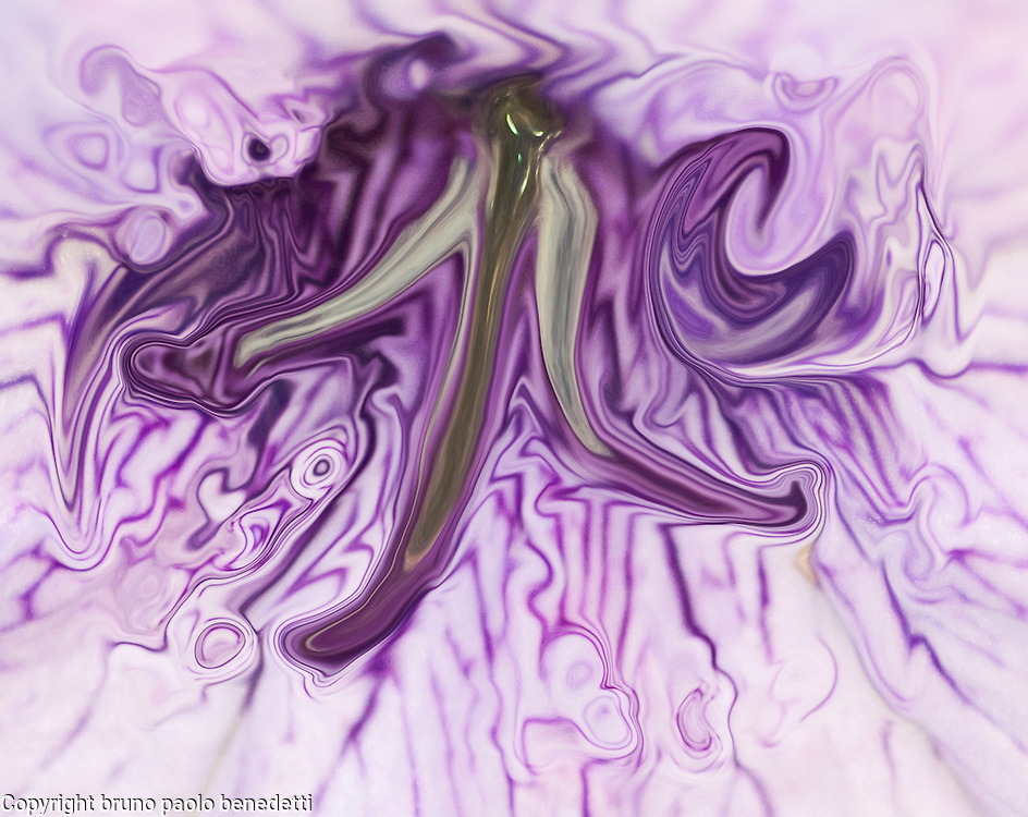 fluid floating abstract shape on dark violet background becoming more and more light when far from center.