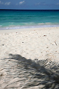 There are many beautiful spots to visit in Barbados along the coast.  From the rugged North Point to calm idealic West Coast and freshness of the South. All have their own natural beauty and must be seen. <br /> BEACH &amp; COCONUT SHADOW, BARBADOS