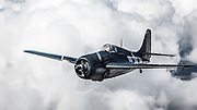 FM-2 Wildcat of the Erickson Aircraft Collection,