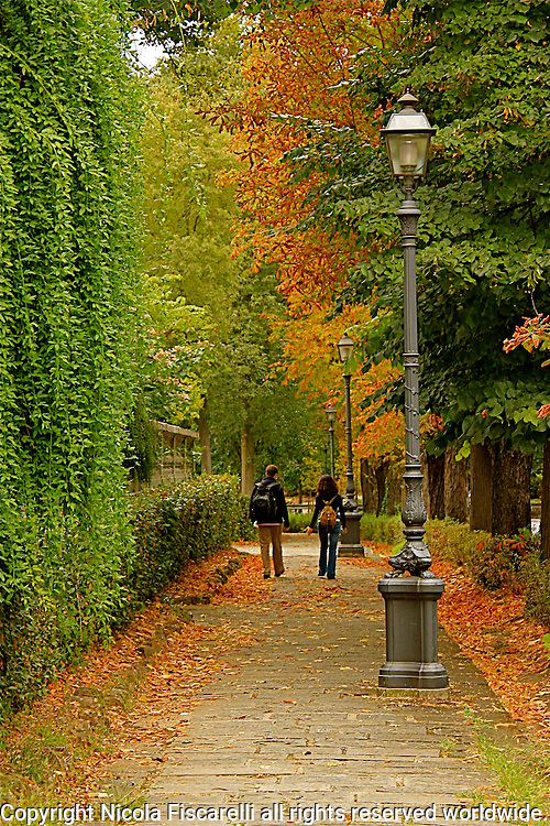 Two young adults stroll through the beautiful Florentine tree lined Viale Galileo .