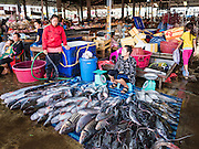 16 JUNE 2016 - PAKSE, CHAMPASAK, LAOS:  A woman sells fish in Dao Heuang Market, the largest market in Pakse. Pakse is the capital of Champasak province in southern Laos. It sits at the confluence of the Xe Don and Mekong Rivers. It's the gateway city to 4,000 Islands, near the border of Cambodia and the coffee growing highlands of southern Laos.     PHOTO BY JACK KURTZ