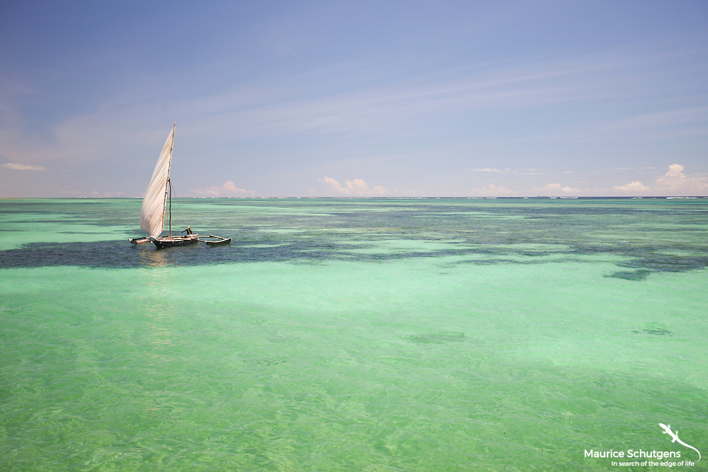 A fisherman glides over Diani Beach, Kenya