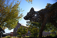 statue, wolves, wolf, copper, campus, fall, trees, color, sunny