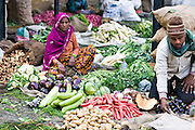 INDIA, NEW DELHI:  Indian woman and her son prepare their beautiful, fresh vegetables for sale in the market in New Delhi.
