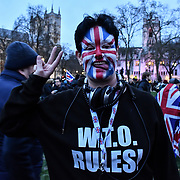 London, UK. 31 January 2020, Pro-Brexit demonstraton Day of Brexit, Westminster, London, UK