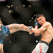 Marlon Vera (blue trunks) defeated Wuliji Buren (white trunks) in a bantamweight bout at UFC 227 held at the Staples Center in Los Angeles on August 4, 2018. Photo by Todd Bigelow for ESPN.