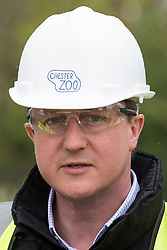© Licensed to London News Pictures . 06/05/2015 . Chester , UK . The Conservative Party Leader DAVID CAMERON visits a building site for an extension at Chester Zoo on the final day of the election campaign . Photo credit : Joel Goodman/LNP