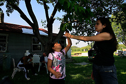 CANADA ALBERTA FORT CHIPEWYAN 21JUL09 - Greenpeace campaigner Melina Labouchan-Massimo and Kaya Mercredi from the Athabasca Chipewyan First Nation play at the Mike Mercredi's cabin on the river Athabasca, northern Alberta, Canada...In recent years, the frequency of deformities, lesions and cancers found in fish caught in Lake Athabasca has increased dramatically. Local residents suspect the rapidly expanding tarsands operations further upstream as the cause of their health concerns...The tar sand deposits lie under 141,000 square kilometres of sparsely populated boreal forest and muskeg and contain about 1.7 trillion barrels of bitumen in-place, comparable in magnitude to the world's total proven reserves of conventional petroleum. Current projections state that production will  grow from 1.2 million barrels per day (190,000 m³/d) in 2008 to 3.3 million barrels per day (520,000 m³/d) in 2020 which would place Canada among the four or five largest oil-producing countries in the world...The industry has brought wealth and an economic boom to the region but also created an environmental disaster downstream from the Athabasca river, polluting the lakes where water and fish are contaminated. The native Indian tribes of the Mikisew, Cree, Dene and other smaller First Nations are seeing their natural habitat destroyed and are largely powerless to stop or slow down the rapid expansion of the oil sands development, Canada's number one economic driver...jre/Photo by Jiri Rezac / GREENPEACE..© Jiri Rezac 2009