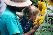 Carey Lung and daughter Hailey Treiber Lung admiring their sunflowers, Tucson, Arizona..Subject photograph(s) are copyright Edward McCain. All rights are reserved except those specifically granted by Edward McCain in writing prior to publication...McCain Photography.211 S 4th Avenue.Tucson, AZ 85701-2103.(520) 623-1998.mobile: (520) 990-0999.fax: (520) 623-1190.http://www.mccainphoto.com.edward@mccainphoto.com