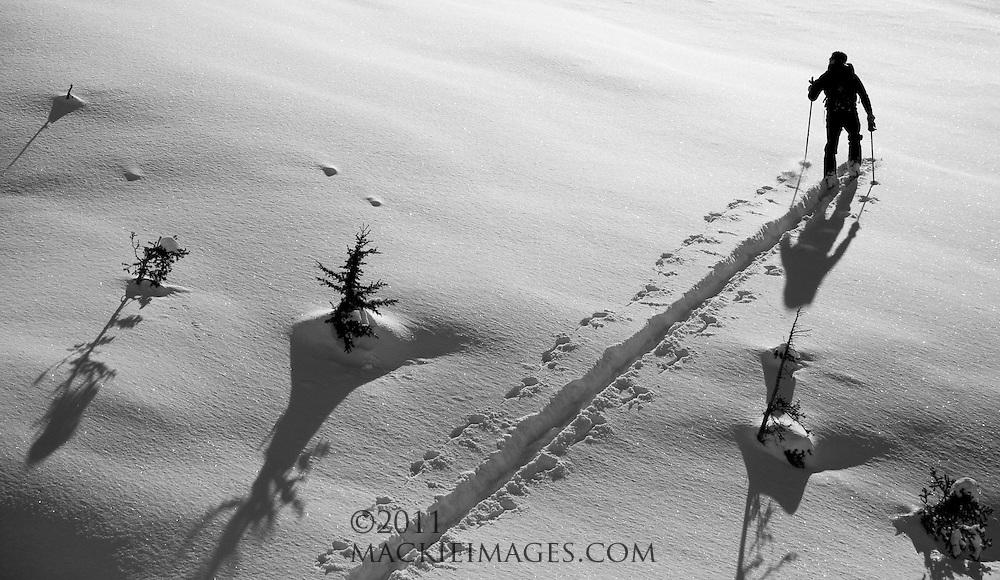 Van Epps Backcountry Ski Tour, central Washington Cascades.