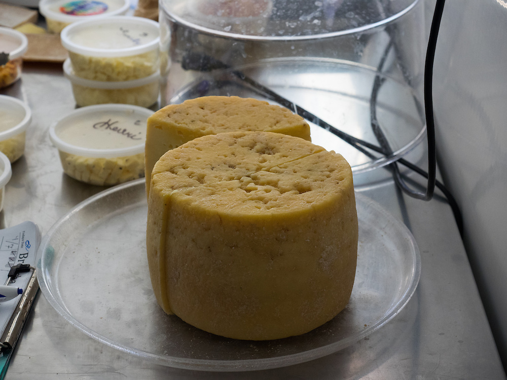 Testing cheese wheels at Pacheco Ranch & Achandinha Cheese Company