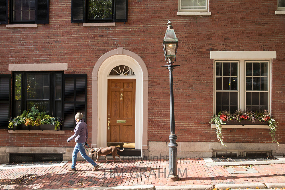 Woman walking dog in W. Cedar Street in the Beacon Hill historic district of Boston, Massachusetts, USA