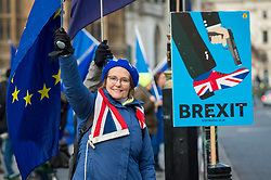 © Licensed to London News Pictures. 11/01/2019. LONDON, UK.  An anti-Brexit demonstrator stands outside the Houses of Parliament with flags and placards.  MPs are due to vote on Prime Minister Theresa May's Brexit deal on 15 of January.  Photo credit: Stephen Chung/LNP