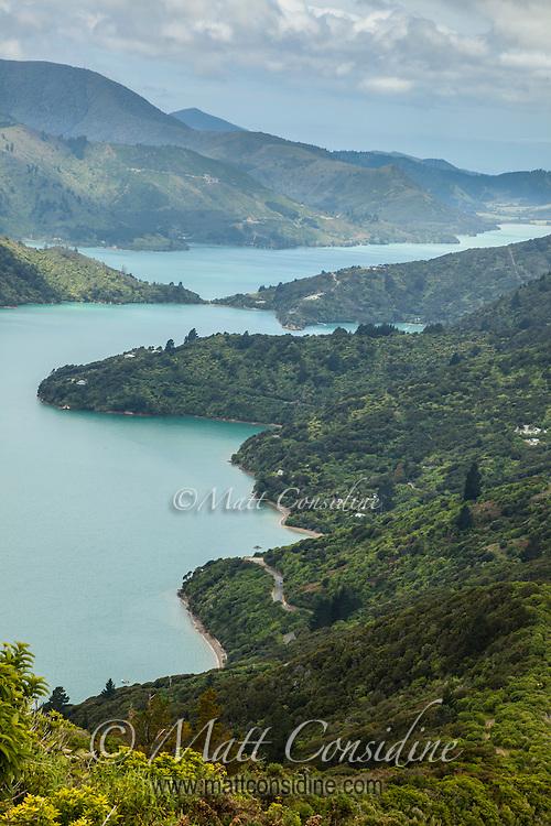 Beautiful waterway Marlborough Sounds. (Photo by Travel Photographer Matt Considine)