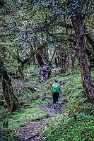 Trekking on the Annapurna Dhaulagiri trail.
