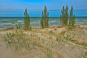 Shoreline of Lake Huron<br />