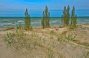 Shoreline of Lake Huron<br />Pinery Provincial Park<br />Ontario<br />Canada