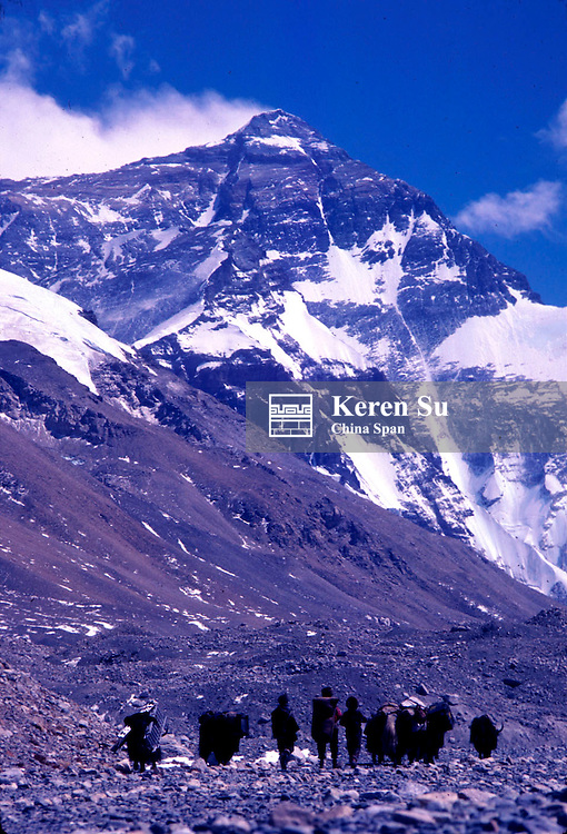 #1001351.TB90481a: Expedition supporting team, yak caravan, in the Ronbu Valley with Mt. Everest (north face), Tibet, China