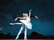 Swan Lake<br />