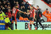 Tyrone Mings of AFC Bournemouth replaces AFC Bournemouth defender Simon Francis who goes off injured during the Premier League match between Bournemouth and Manchester City at the Vitality Stadium, Bournemouth, England on 13 February 2017. Photo by Graham Hunt.