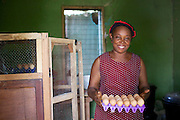 Ijeoma Ewurum used to keep chickens as a hobby but when she retired from her teaching career she set it up as a larger business. <br /> <br /> She attended a business training workshop with Youth for Technology and signed up to receive Business SMS support.<br /> <br /> The main examples of success and impact from the SMS are around innovation and improving product quality; as a result she invested in new feed and vitamins and now has bigger and better eggs and heavier healthier birds. <br /> <br /> What she valued most from the training was learning about capital – she has not heard that word before but now understands the need to reinvest in your business. From the face to face she also valued meeting other women who offered advice.