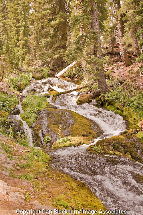 Hat Creek Cascades tumbles through the forest in Lassen National Park California.