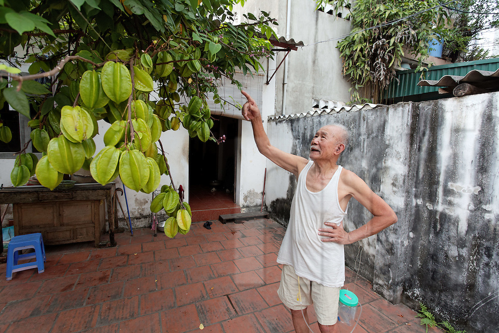 An old man points up at a Carambola (starfruit) tree in front of his home in Van Phuc Silk village, Hanoi, Vietnam, Southeast Asia