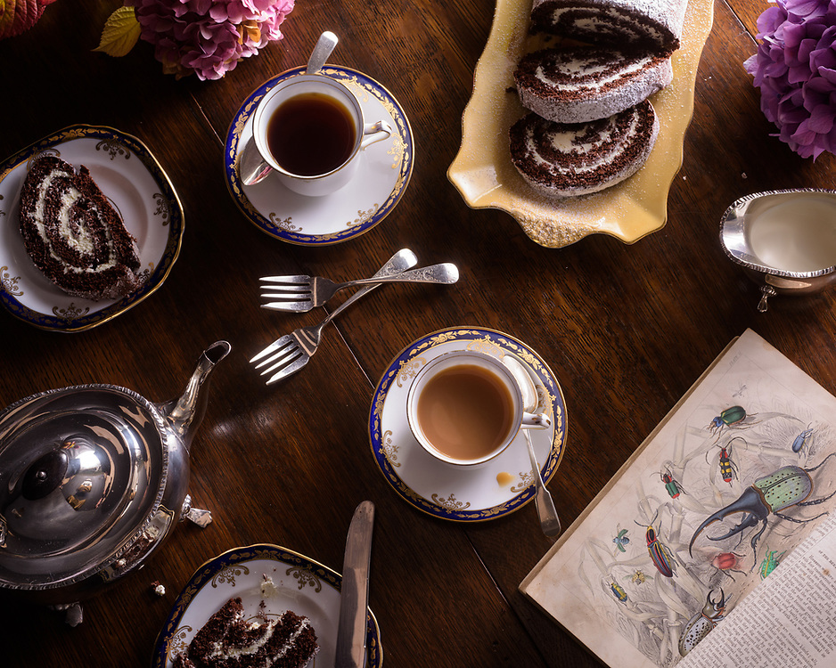 Tea and Swiss roll, Brechin, Scotland