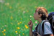 Child (age 8) wearing a backpack and blowing dandelion seeds, Wind River Range, Wyoming