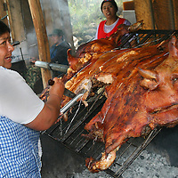 Alberto Carrera, Local People Cooking Grilled Pork, Chancho a la Barbosa, Ecuador, South America, America