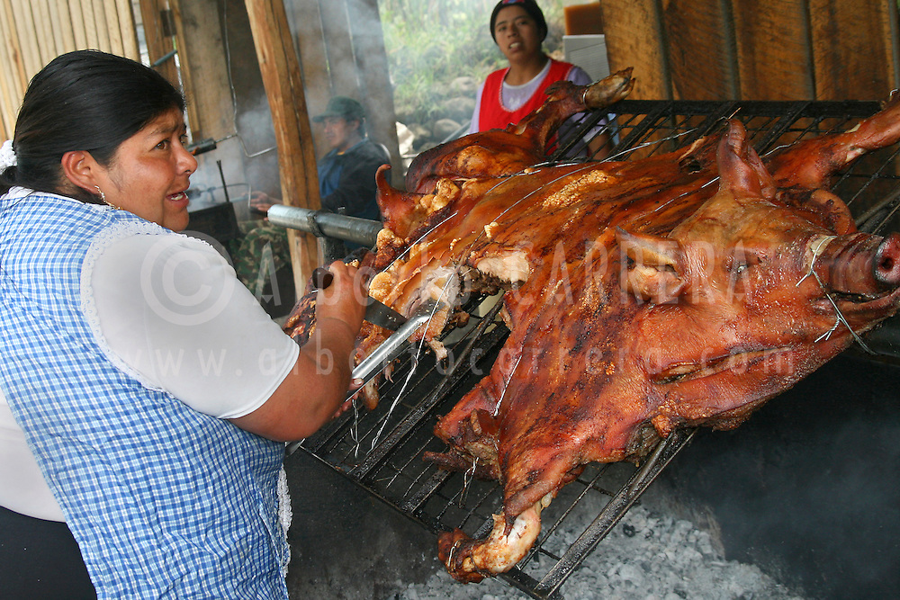 Alberto Carrera, Local People Cooking Grilled Pork, Chancho a la Barbosa, Ecuador, South America, America