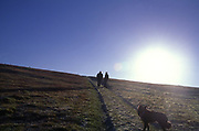 A089GE Morning sun rising over hill with two walkers dog