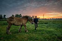 OOSTDUINKERKE, BELGIUM - April 10: Paardenvissers: the last Knights of the seas<br /> <br /> Depuis&nbsp;decembre 2013, la peche a la&nbsp;crevettes a cheval est inscrite&nbsp;sur la liste du patrimoine culturel&nbsp;immateriel de l&rsquo;Unesco.<br /> <br /> La peche aux crevettes &agrave; cheval est une tradition ancestrale qui se pratique en Belgique depuis le 15eme siecle<br /> A cette epoque, la pratique de cette activite &eacute;tait chose courante dans les Flandres car&nbsp;elle permettait aux paysans et aux agriculteurs de disposer d'un revenu supplementaire.<br /> Pratiquee alors sur toute&nbsp;la cote de la mer du Nord (en France, en Belgique, en Hollande et meme dans le sud de l'Angleterre) elle est perpetuee aujourd'hui uniquement &agrave; Oostduinkerke<br /> Des 1950, les dernieres equipes de pecheurs de crevettes a cheval ont bien failli disparaitre en raison du bouleversement constant de leur environnement: le&nbsp;littoral qui etait, par le passe plutot plat et regulier, s'est petit a petit transforme; de nombreux &quot;trous&quot; (qui se deplacent au moment des tempetes)&nbsp;sont apparus et donnerent ainsi lieu a un terrain beaucoup&nbsp;moins pratiquable pour ces cavaliers de la mer.<br /> A ce moment, Oostduinkerke comptait encore 13 p&ecirc;cheurs de crevettes &agrave; cheval, plus que 7 en 1968 et 3 seulement en 2000. De nos jours, ils ne sont plus que 10 mais des jeunes suivront car la passion se transmet souvent de generation&nbsp;en generation dans la meme famille.<br /> Cette activite devenue une veritable attraction touristique sur les plages d'Oostduinkerke et de Nieuwpoort-baden Belgique.<br /> Initialement les pecheurs utilisaient des mulets pour leur calme et leur puissance de traction.<br /> Jadis, la &quot;Drague&quot; (long filet conique) etait attachee a une latte en bois, epaisse et large de 4m, dont la face avant etait arrondie en forme de cone<br /> Le travail se fait presque toujours en &eacute;quipe :&nbsp;pendant qu'un des p