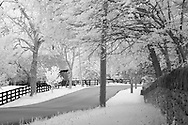 Rural Kentucky road with stone wall on left and four plank fence on right.  Infrared (IR) photograph by fine art photographer Michael Kloth. Black and white infrared photographs