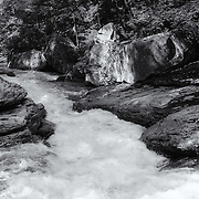 """Flow of Life""<br />